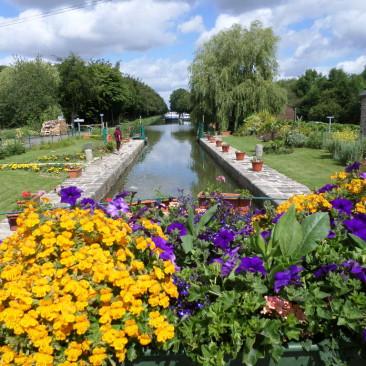 Sorties nature/ Botanical outputs/ Выходы на природу